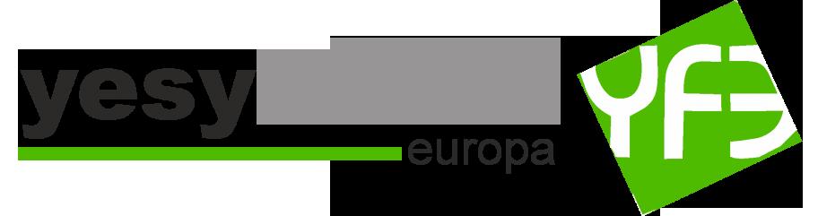 Yesyforma Europa – Fabricación y Comercialización de techos registrables de escayola y elementos de decoración en escayola